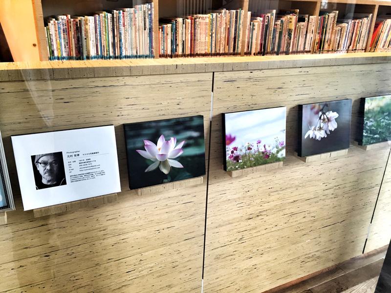 なみきスクエアに移転した東図書館に写真を飾っていただきました