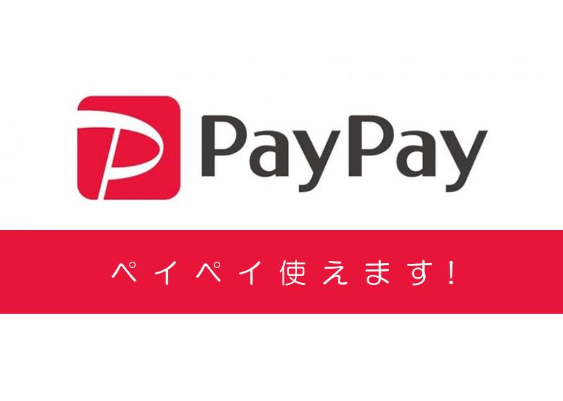 【支払方法追加のご案内】PayPay 使えるようになりました